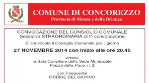 Foto-Consiglio27Novembre2014